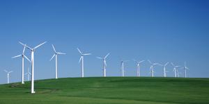 Sycomore AM unveils eco-friendly fund