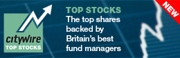 Citywire Top Stocks (b)