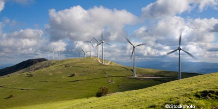 Is it time to back renewable energy?