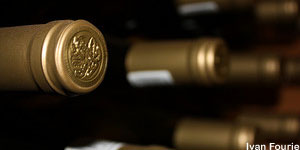 Platform opens wine fund opportunity to wealth managers
